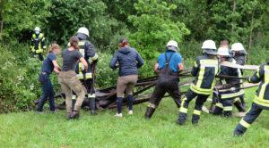 Pferd steckt fest – Rettungsaktion im Wassergraben